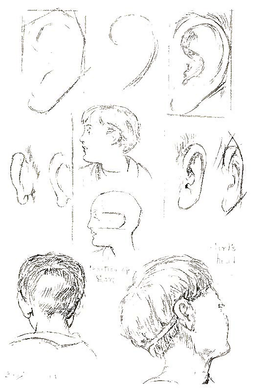 How To Draw Curly Hair And The Human Face Drawing Tutorials   Rachael ...