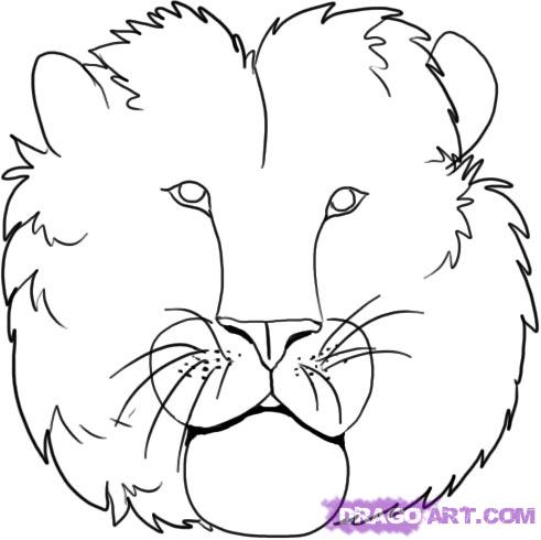 How To Draw Lions Drawing Tutorials Drawing How To Draw Lion