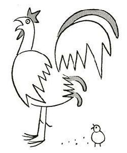 how to draw cartoon male chickens roosters