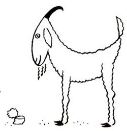 How To Draw Cartoon Goats Easy Drawing Lessons For Kids