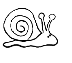 Snail drawing for kids images for How do you draw a snail