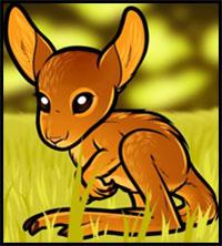 How To Draw A Baby Kangaroo
