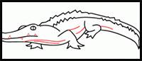 how to draw a crocodile