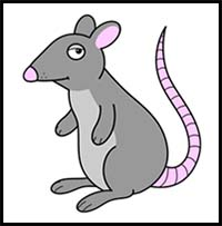 How To Draw Cartoon Mice Rats Realistic Mice Rats Drawing