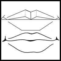 How To Draw Mouths Lessons How To Draw The Face Drawing Tutorials