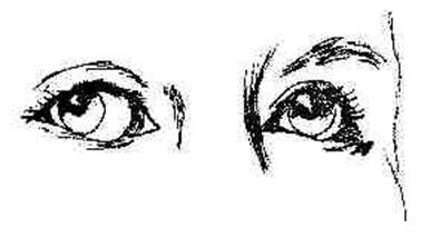 Line Drawing Eye : How to draw eyes the face drawing tutorials