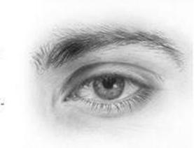 Gallery images and information: Realistic Male Eye Drawing