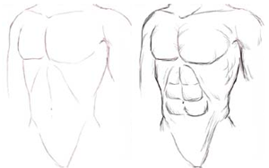 Figure drawing how to draw human body torso with lesson and drawing manga male upper torso ccuart Gallery