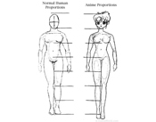 proportions of the human figure how to draw people in correct