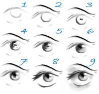 A drawing the facial features lessons tes teach how to draw eyes amp how to draw the face drawing tutorials drawing ccuart Gallery