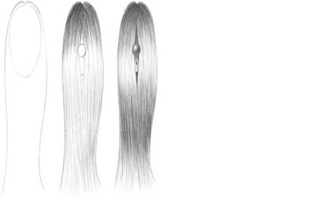How to Texture Hair Drawing How to Draw Straight Hair