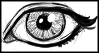 How To Draw Eyes How To Draw The Face Drawing Tutorials Drawing