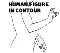 Contour Drawing Exercises & Lessons : Improve Your Drawings