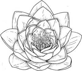 Artists use shading zentangled lessons tes teach Teach me how to draw a flower