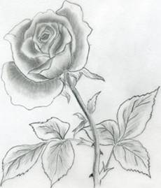 How to draw flowers drawing tutorials drawing how to draw how to draw flower mightylinksfo
