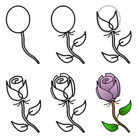 How to Draw Roses with Easy Step by Step Valentines Day Drawing