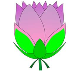 How to Draw Blooming Lotus