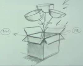 How to Draw Flower in 3D box