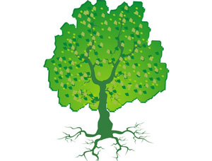 Drawing Trees How To Draw Trees Branches Leaves With Drawing