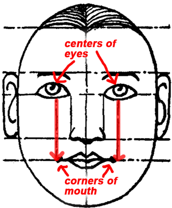 The mouth is usually two eyes wide and is best located by drawing an imaginary line down from the center of each eye