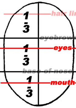 The upper third of the center third you will mark as the location of the eyes. The upper third of the lower third will be the location of the mouth.