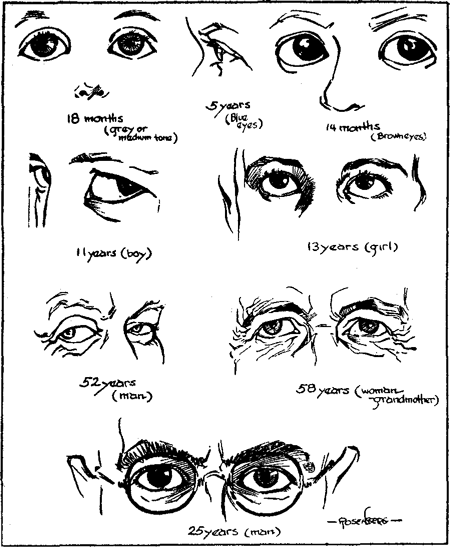 The Eyes And Change Which They Undergo From Babyhood To Mature Age