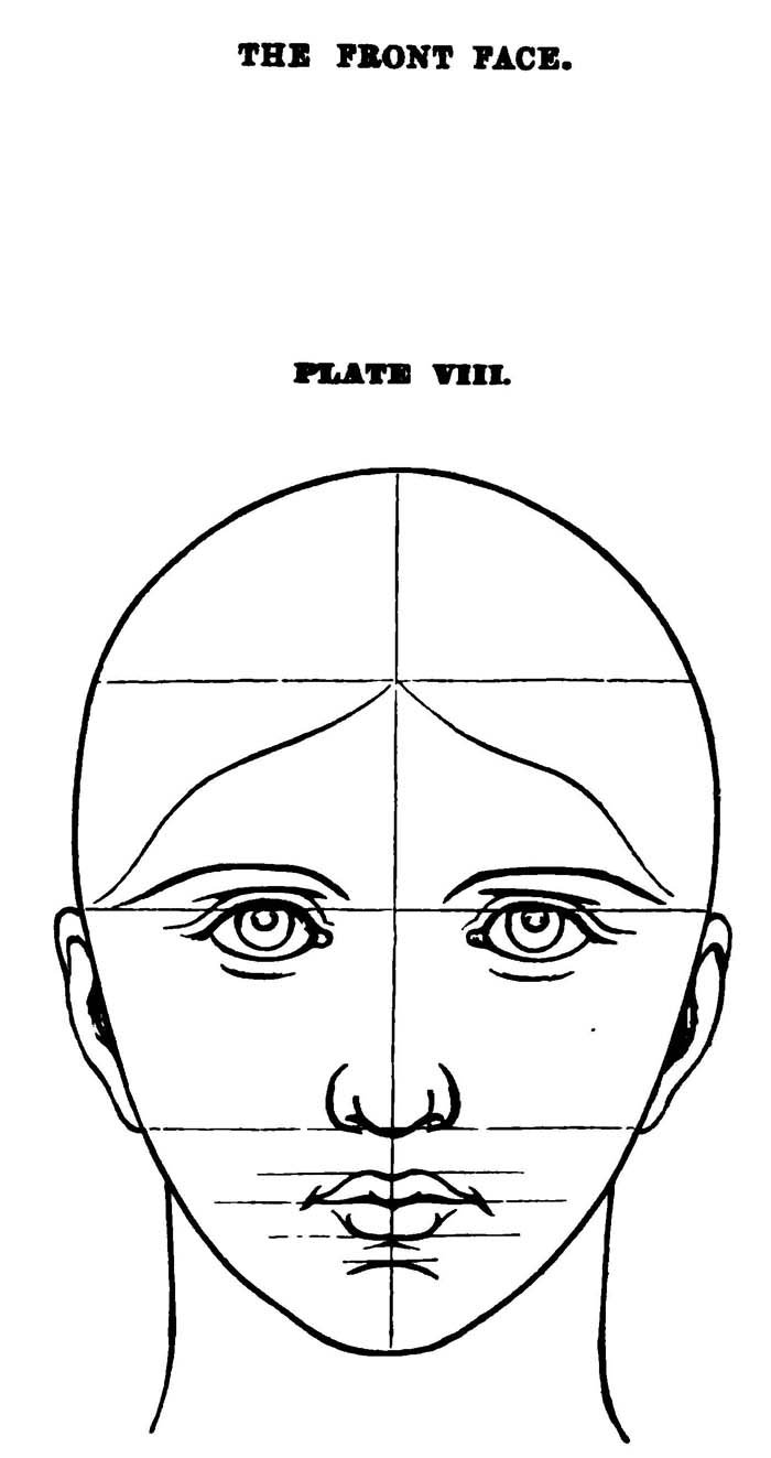 Drawing Facial Features in Correct Proportions and ...