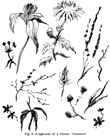 Drawing Flowers Plants Weeds And Leaves With Drawing Lessons Step