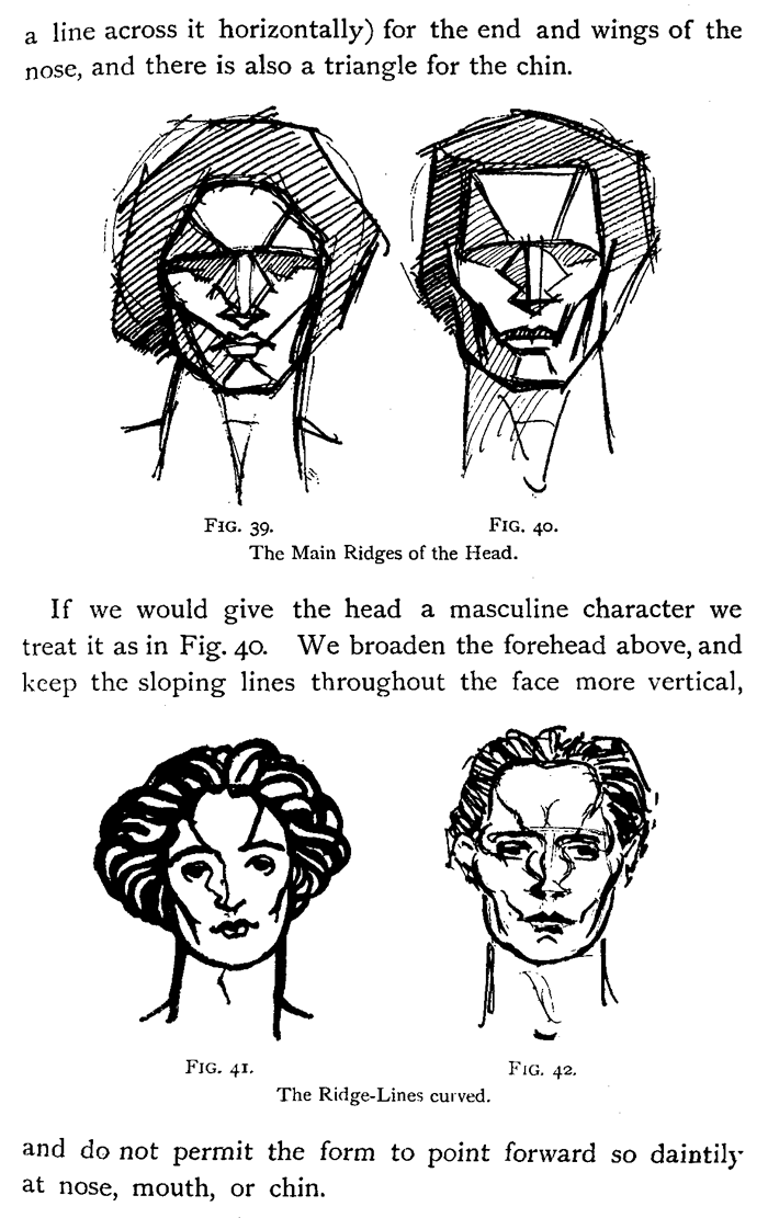 Drawing Human Heads, Necks And Shouldres In Correct