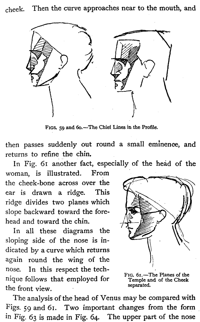 drawing human heads necks shouldres correct proportions figure drawing instructions