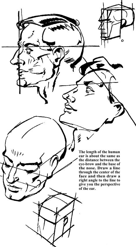 drawing the human face how to draw head eyes nose mouth ears