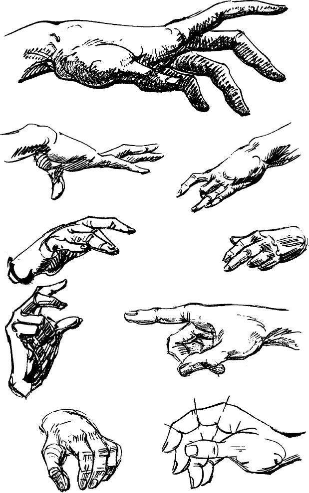 how to draw human hands