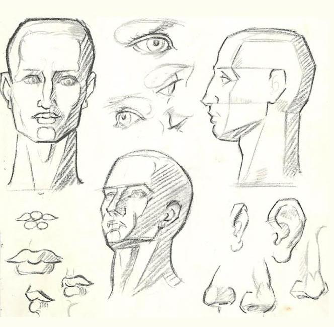 How to draw the human figure drawing body head facial for How to draw a body step by step