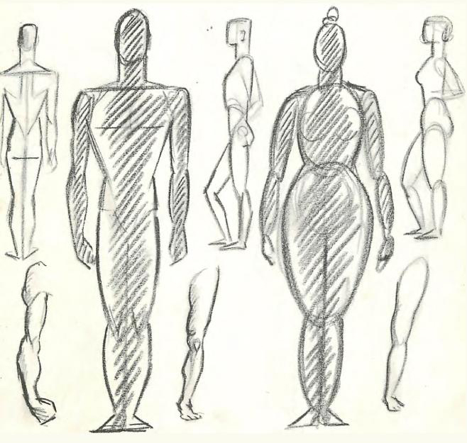 Now lets study the simplified anatomy and geometry of the human figure and of animals men and women differ chiefly in the geometry of their shapes