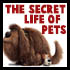 How to Draw Cartoon Characters - The Secret Life of Pets