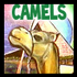 Drawing Camels