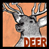 Drawing Deer, Buck, Does