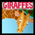 Drawing Giraffes
