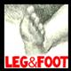 Draw Legs & Feet
