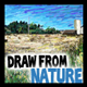 Nature Landscape Drawing