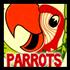 Drawing Parrots