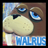 Drawing the Walrus
