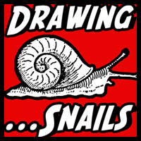 how to draw gary the snail step by step