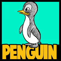 How to Draw Cartoon Baby Penguins in Simple Steps Lesson