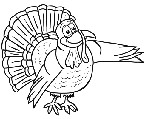 How to Draw Cartoon Turkeys Thanksgiving Animals Step by ...
