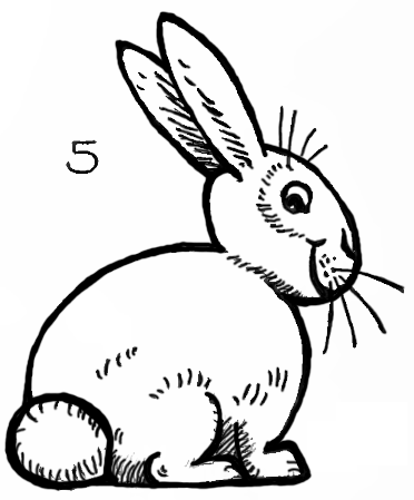How to Draw Bunnies with Easy Bunny Rabbits Drawing Lesson ...