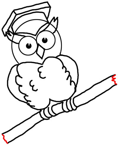 Step 15 Drawing Comic Cartoon Owls with Graduation Cap on ...