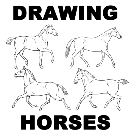 How to draw a horse step by step easy for kids - photo#25