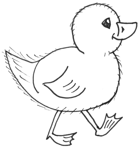 Cute Baby Chick Drawing How To Draw Chicks Cartoon