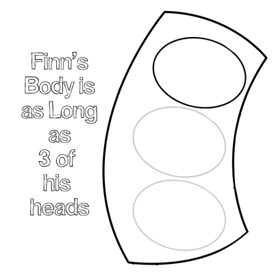 Step 2 Drawing Finn the Human Boy with step by step tutorials